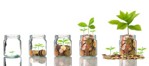 Imagine cu plante crescand in borcane cu bani (monede). Imaginea reprezinta o metafora a demararii si cresterii afacerii cu ajutorul serviciilor de consultanta fonduri europene. Plantele sunt asezate in ordinea dimensiunii.