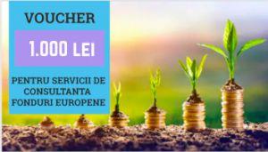 Voucher valoric de 1000 lei folosit pe pagina conditii start-up nation. PLante care cresc cu ajutorul serviciilor de consultanta accesare start-up nation.