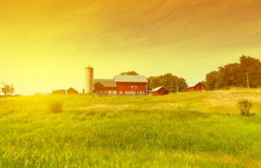 Instalarea Tinerilor Fermieri masura 6.2 Fonduri Europene pentru culturi si crestere animale - o ferma pe un camp galben, iar in fundal cerul si soarele la apus.