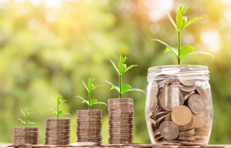 Idei de afaceri cu fonduri europene nerambursabile, plante crescand pe monede aurii, iar in fundal lumina patrunde printre crengile verzi ale copacilor.