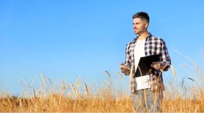 Fonduri Europene pentru tineri fermieri: un tanar cu un laptop in mana merge pe un camp cultivat cu grau, iar deasupra cerul albastru.