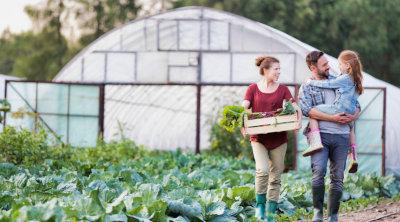 Fonduri Eropene Neramburabile Dezvoltare Ferme Mici pentru cresterea Fermelor Fermieri Mici